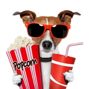 Hund im Kino